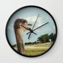 Ostentasious Ostrich Wall Clock