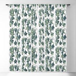 Ernst Haeckel Peridinea Plankton Algae Teal Blackout Curtain