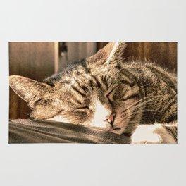 Sleeping Tigers Rug