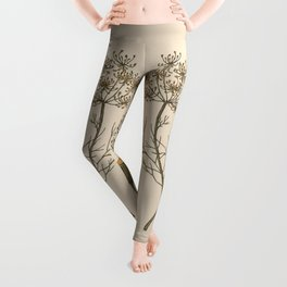 Dill Leggings