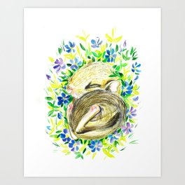 Sleepy baby squirrel Art Print