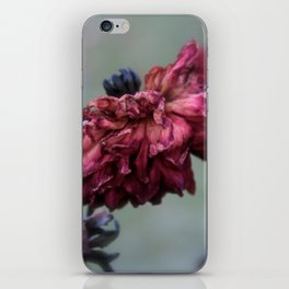 Wilted iPhone Skin