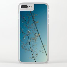 flower photography by Dan Musat Clear iPhone Case