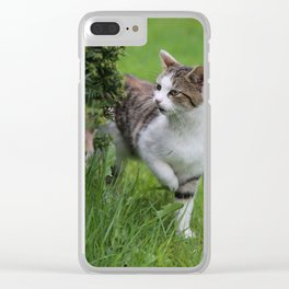 house cats Clear iPhone Case