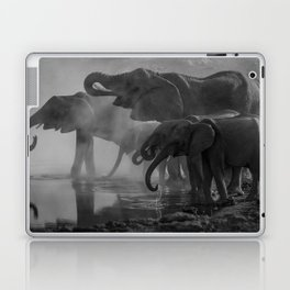 Serengeti Laptop & iPad Skin