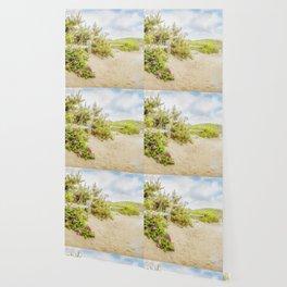 Roses at Marconi Beach Wallpaper