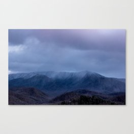 Hide In The Haze Canvas Print