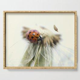 Dandelion Ladybugs Serving Tray