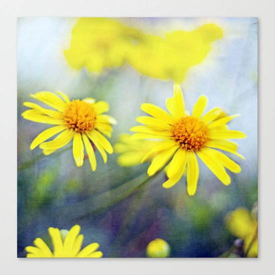 yellow day Canvas Print