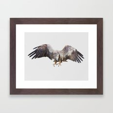 Arctic Eagle Framed Art Print