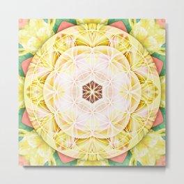 Flower of Life Mandalas 7 Metal Print