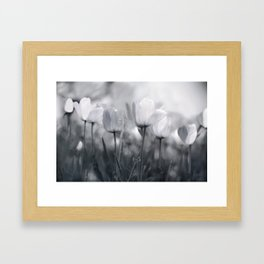 Pure Glow Framed Art Print