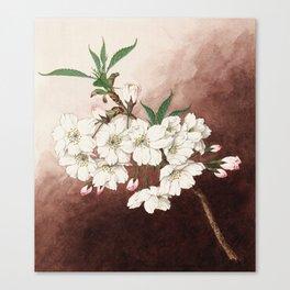 Jyonioi - Upper Fragrance Cherry Blossoms Canvas Print