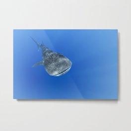 160526-6187 Metal Print