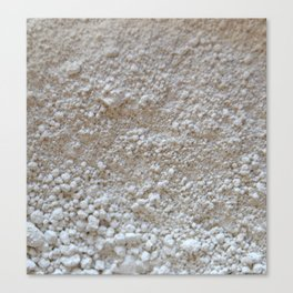 Blanco Absoluto Canvas Print