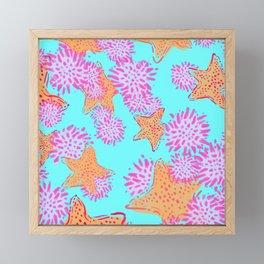 Starfish & Sea Urchin teal Framed Mini Art Print