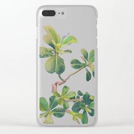 Tropic Clear iPhone Case