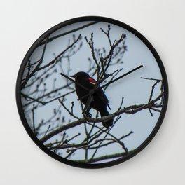 Reflective Red-Wing Blackbird Wall Clock