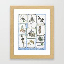 Winter Curiosities Framed Art Print