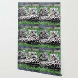 Aqua_Leopard_20180106_by_JAMColorsSpecial Wallpaper