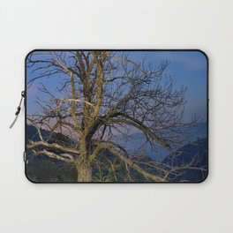 Centenary Chestnut at blue hour Laptop Sleeve