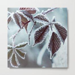Spirit of winter Metal Print
