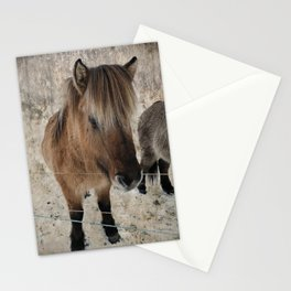 snowy Icelandic horse Stationery Cards