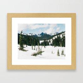 Mount Rainier National Park II Framed Art Print