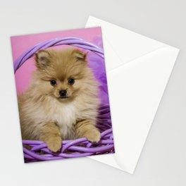 Tan Pomeranian Puppy Sitting in a Purple Basket with Purple Floral Decorations and a Pink Background Stationery Cards