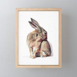 Bunny Rabbit Print Framed Mini Art Print