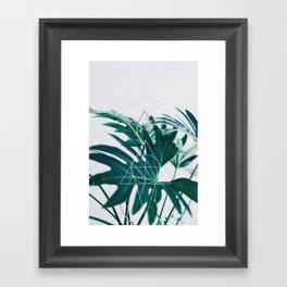 Botanic geometry Framed Art Print