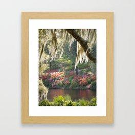 Southern Wonderland 1 Framed Art Print