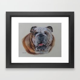 ENGLISH BULLDOG Bulldog bitch face Pastel drawing DOG portrait Framed Art Print