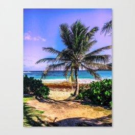 Palm Tree Island Sandy Beach Canvas Print