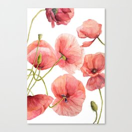 Red Poppies Bright Sunlight, Big Beautiful Red Flowers Canvas Print