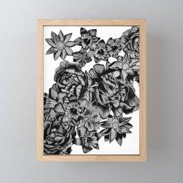 Flowers of Greece Framed Mini Art Print