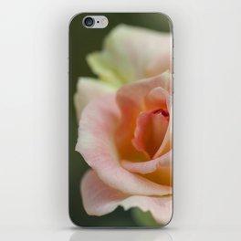 Flower Five iPhone Skin