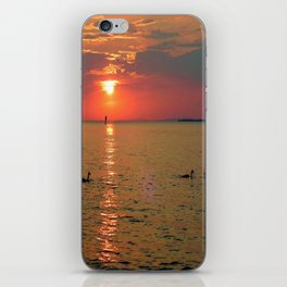 Swans in the Sunset iPhone Skin