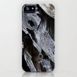 300 Year Old Tree Bark 2 iPhone Case