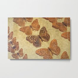 The Butterfly Collection 4 Metal Print