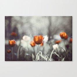 Orange Grey Tulip Photography, Burnt Orange Tulip Flowers Photo Canvas Print