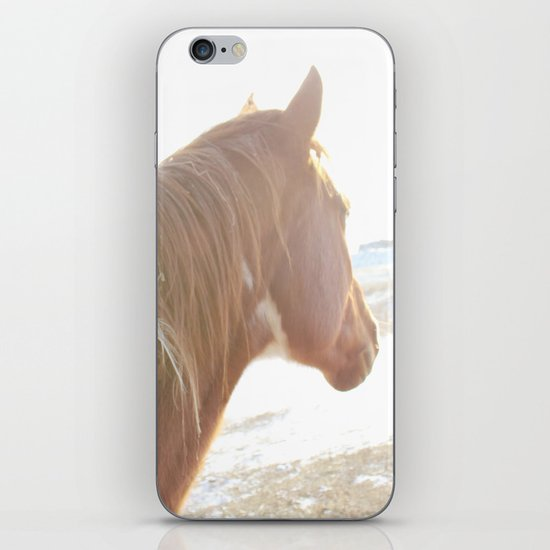 Sun + Horse iPhone & iPod Skin