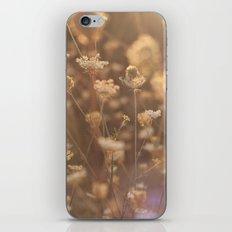 Sunflare II iPhone & iPod Skin