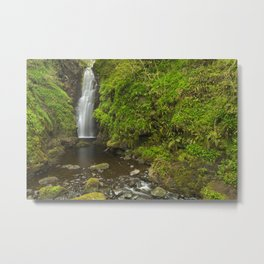 The Cranny Falls in Northern Ireland Metal Print