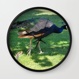 Peacock in the park Wall Clock
