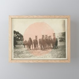 Band of Horses - Peach Framed Mini Art Print