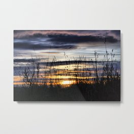 Behind The Grass That Sways Metal Print