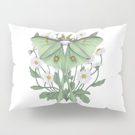 Metamorphosis - Luna Moth Pillow Sham