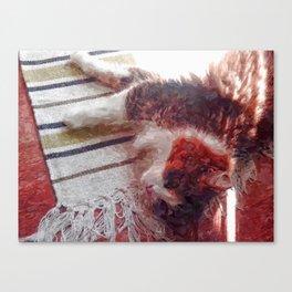Stella beim Sonnen Canvas Print