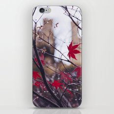 Blood Red Autumn iPhone & iPod Skin